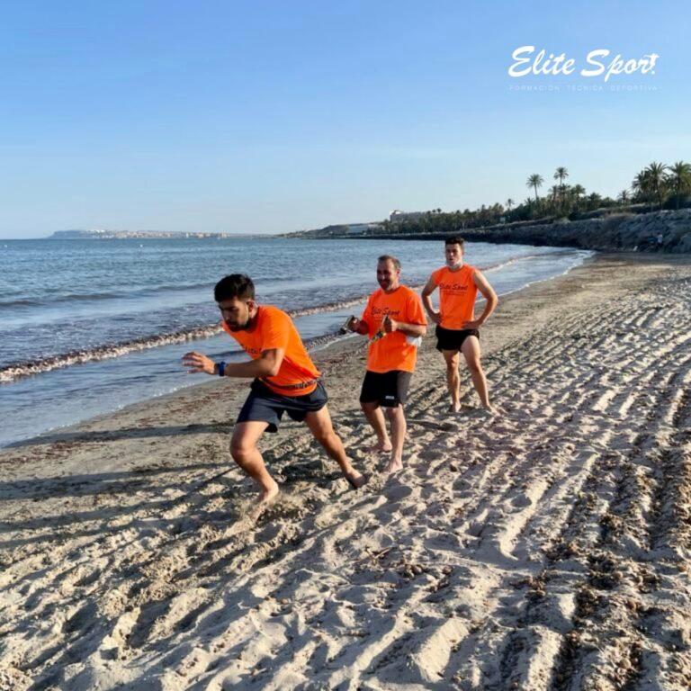 Entrenamiento físico - Curso Técnico deportivo Alicante